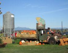 Snohomish County Festival of Pumpkins