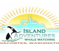 Island Adventures Whale Watching